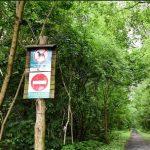 10 zasad zachowania w lesie